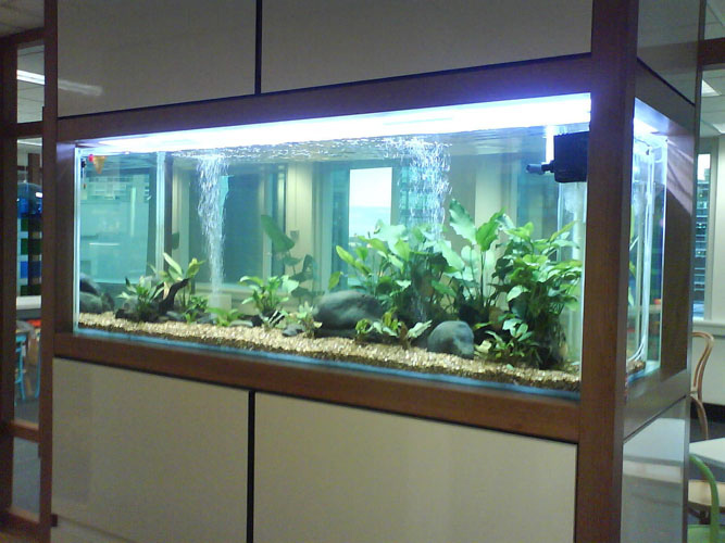 Large scale freestanding or recessed aquariums Canada  : conception installation large scale Aquarium montreal canada 02 from waterfountainscanada.ca size 667 x 500 jpeg 104kB