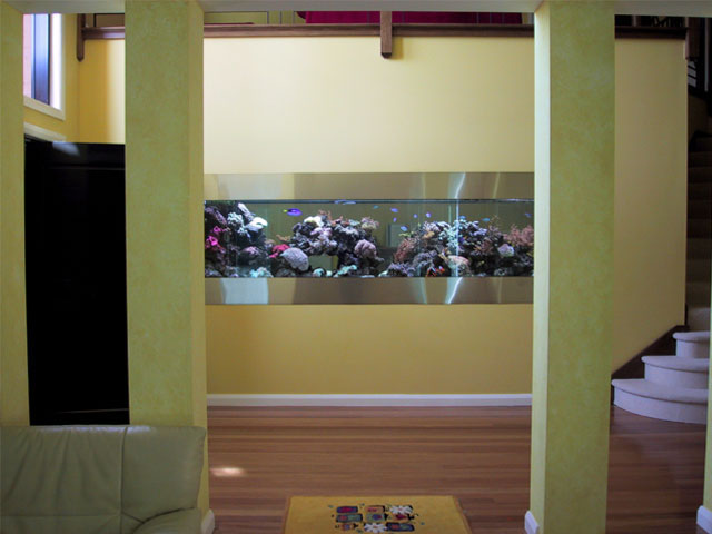 large scale freestanding or recessed aquariums canada. Black Bedroom Furniture Sets. Home Design Ideas